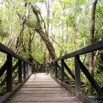 postal parque nacional chiloe