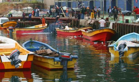 Mesa de Marea Roja busca alternativas para seguir recibiendo beneficios