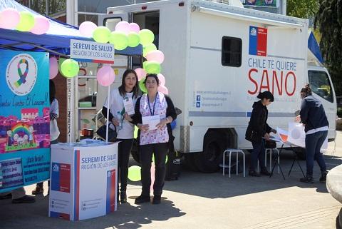 Nutrida agenda desarrolla Seremi de Salud y el Servicio de Salud Chiloé