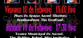 Desde el 10 de febrero se llevará a cabo una nueva versión de Expo Beatle en Ancud